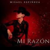 Mi Razón de Ser de Misael Espinoza