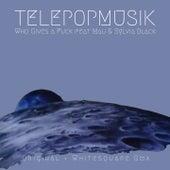 Who Gives a Fuck de Telepopmusik
