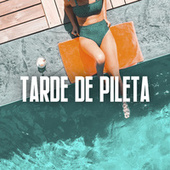 Tarde de Pileta by Various Artists