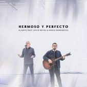 Hermoso y Perfecto (En Vivo) de Aliento