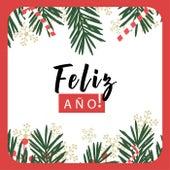 ¡Feliz Año! de Various Artists
