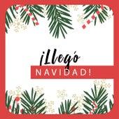 ¡Llegó Navidad! de Various Artists