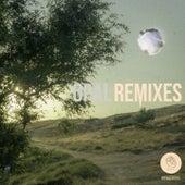 Opal (Remixes) by Snavs
