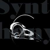 Synthony by Daft Noodles, Fun Kool, Texture Unity, Simple Minds, Shawanna, Alfrenk, Mr Joker, Right Mood, Hiroki Esashika, Phunk Investigation, Sad Affair, White Spaces, Neo Kyma, Vinjay, Planet Funk