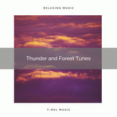 Thunder and Forest Tunes de Rain Sounds Collection