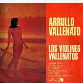 Arruyo vallenato by Alfredo Gutierrez