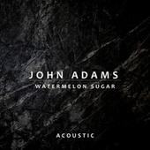 Watermelon Sugar (Acoustic) de John Adams