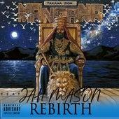 Rebirth by Takana Zion