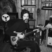 Franklin's Tower by Devendra Banhart
