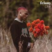 Felony de C-Kay