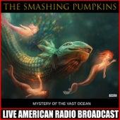 Mystery Of The Vast Ocean (Live) von Smashing Pumpkins