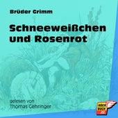 Schneeweißchen und Rosenrot (Ungekürzt) by Brüder Grimm