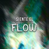Siente El Flow de Various Artists