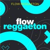 Flow Reggaeton von Various Artists