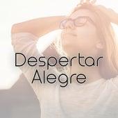 Despertar Alegre by Various Artists