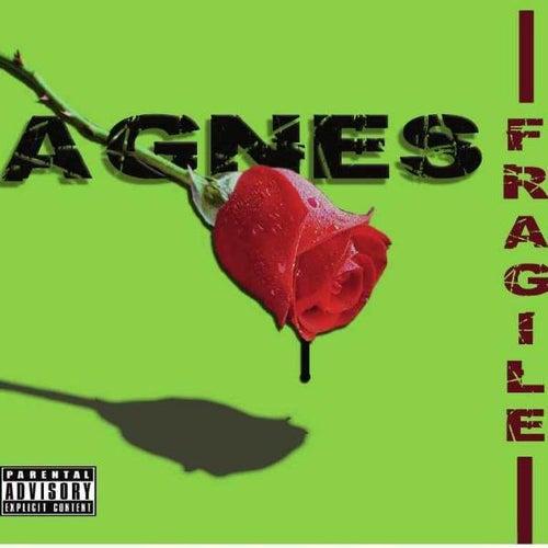 Fragile by Agnes