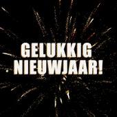 Gelukkig Nieuwjaar! de Various Artists