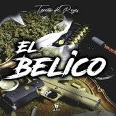 El Belico by Tercia De Reyes