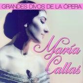 María Callas. Grandes Divos de la Ópera von Various Artists
