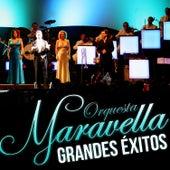 Orquesta Maravella Grandes Éxitos by Orquesta Maravella