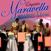 Grandes Éxitos Orquesta Maravella by Orquesta Maravella