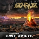 Flame of Burning Fire von Exhaust