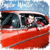 Snälla Tomten von Emilio Walter