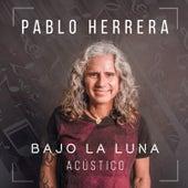 Bajo la Luna (Acoustic Version) de Pablo Herrera