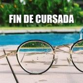 Fin de cursada by Various Artists