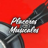 Placeres musicales von Various Artists