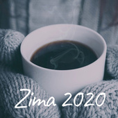Zima 2020 fra Various Artists