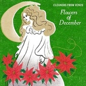 Flowers of December by The Cleaners From Venus