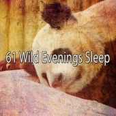 61 Wild Evenings Sle - EP by Trouble Sleeping Music Universe