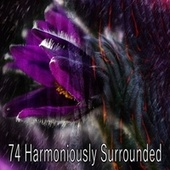 74 Harmoniously Surrounded by Classical Study Music (1)