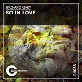 So in Love by Richard Grey