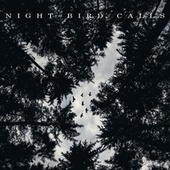 Night Bird Calls by Bird Sounds