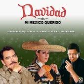 Navidad En Mi Mexico Querido by Various Artists