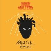 Musik Remixes by David Walters