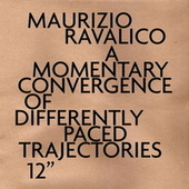 A Momentary Convergence of Differently Paced Trajectories de Various Artists