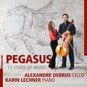 Pegasus - 13 Stars of Music de Alexandre Debrus