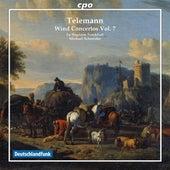 Telemann: Wind Concertos, Vol. 7 by Various Artists