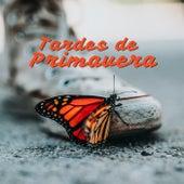 Tardes de Primavera by Various Artists
