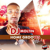 Home Grooves, Vol. 1 by Dj Moltin