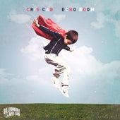 Echo Boom by Cris Cab