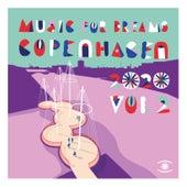 Copenhagen 2020, Vol. 2 by Kenneth Bager