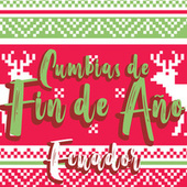 Cumbias de Fin de Año Ecuador! de Various Artists
