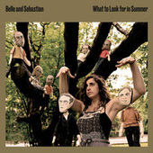 What to Look for in Summer von Belle and Sebastian