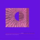Josyara - Rota de Colisão (Yaguareté Y Fortunato Remix) by Josyara
