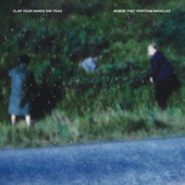Where They Peform Miracles by Clap Your Hands Say Yeah