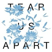 Tear Us Apart by Anberlin